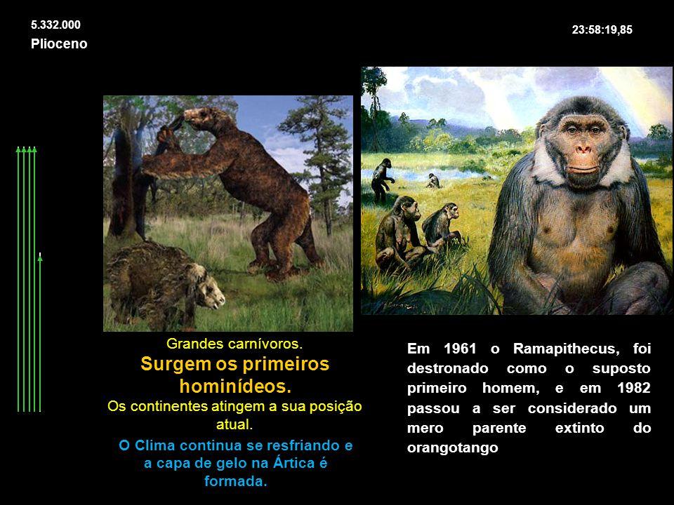 Plioceno 5.332.000 Grandes carnívoros. Surgem os primeiros hominídeos. Os continentes atingem a sua posição atual. O Clima continua se resfriando e a