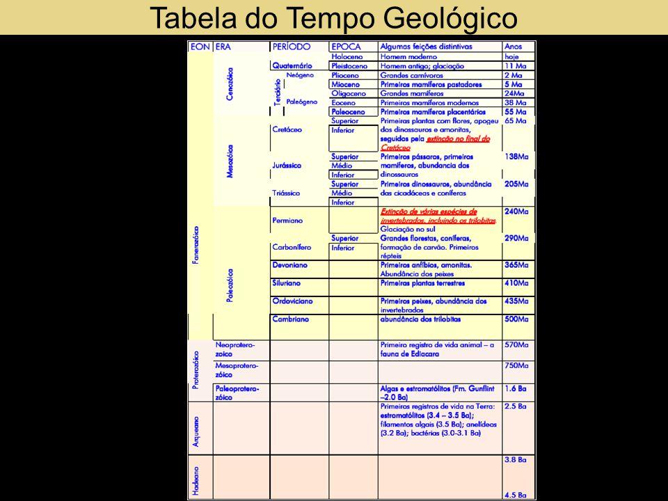 11.000 Quaternário Holoceno ou Recente A civilização humana domina quase todos os ambientes da Terra.