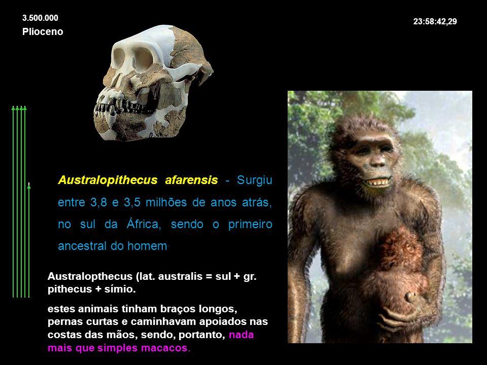 23:58:42,29 Plioceno 3.500.000 Australopithecus afarensis - Surgiu entre 3,8 e 3,5 milhões de anos atrás, no sul da África, sendo o primeiro ancestral