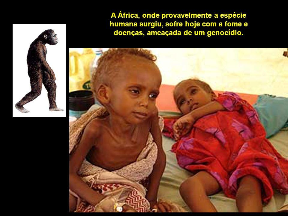 A África, onde provavelmente a espécie humana surgiu, sofre hoje com a fome e doenças, ameaçada de um genocídio.