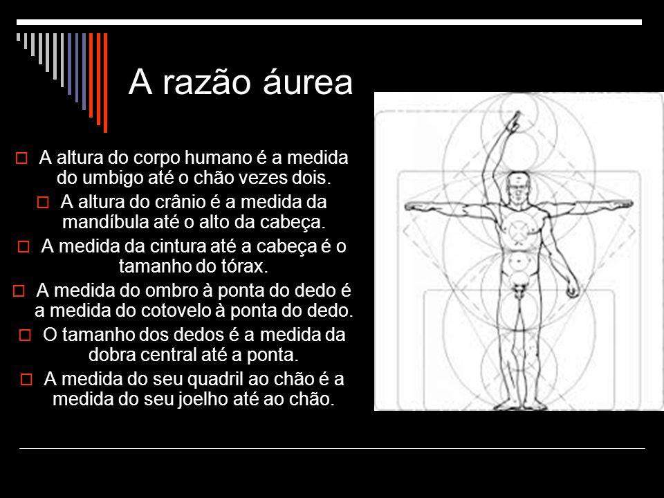 A razão áurea A altura do corpo humano é a medida do umbigo até o chão vezes dois.