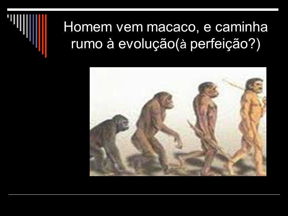 Homem vem macaco, e caminha rumo à evolução( à perfeição?)