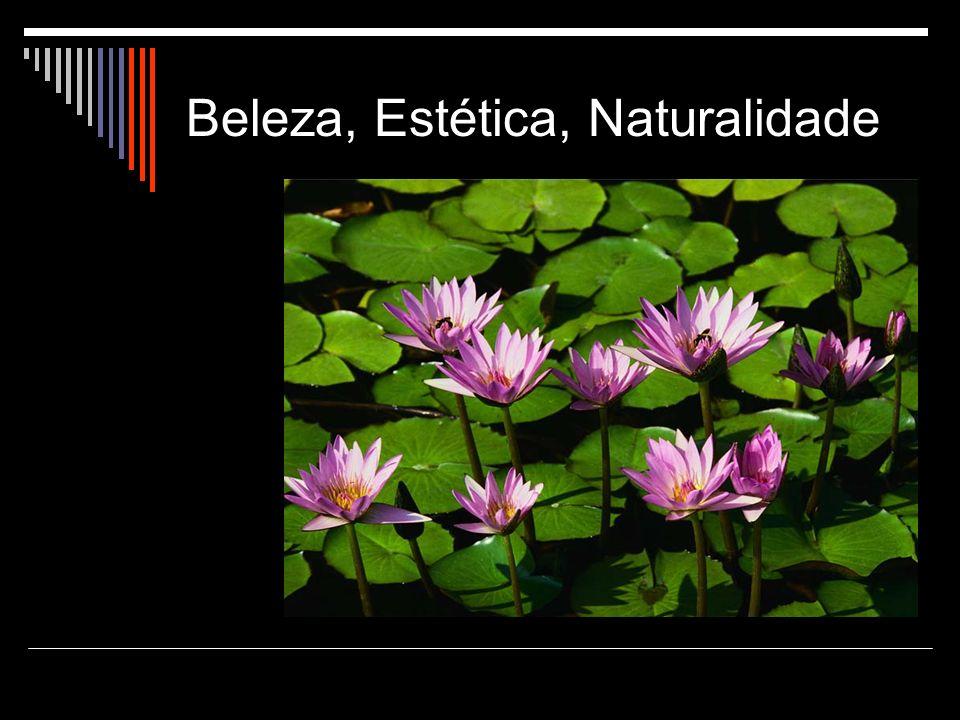 Beleza, Estética, Naturalidade