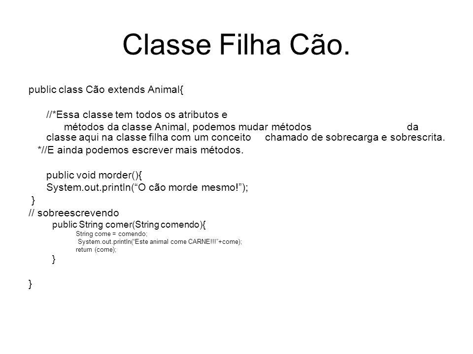 Classe Filha Cão. public class Cão extends Animal{ //*Essa classe tem todos os atributos e métodos da classe Animal, podemos mudar métodos da classe a
