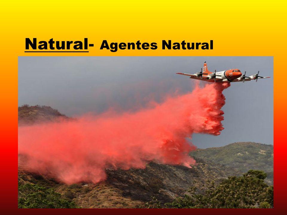 Natural- Agentes Natural