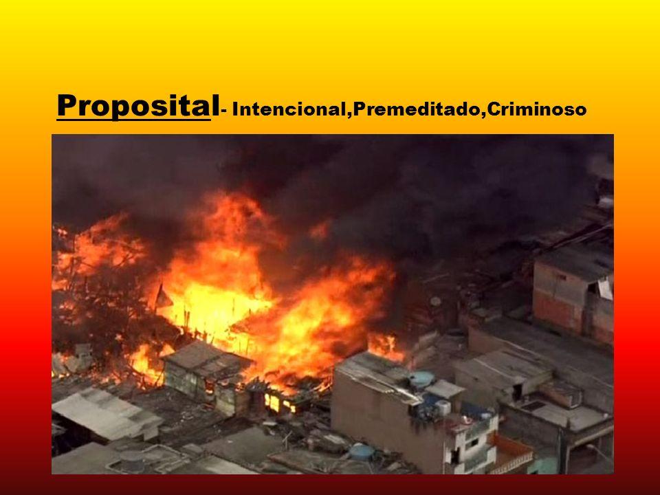 Proposital - Intencional,Premeditado,Criminoso