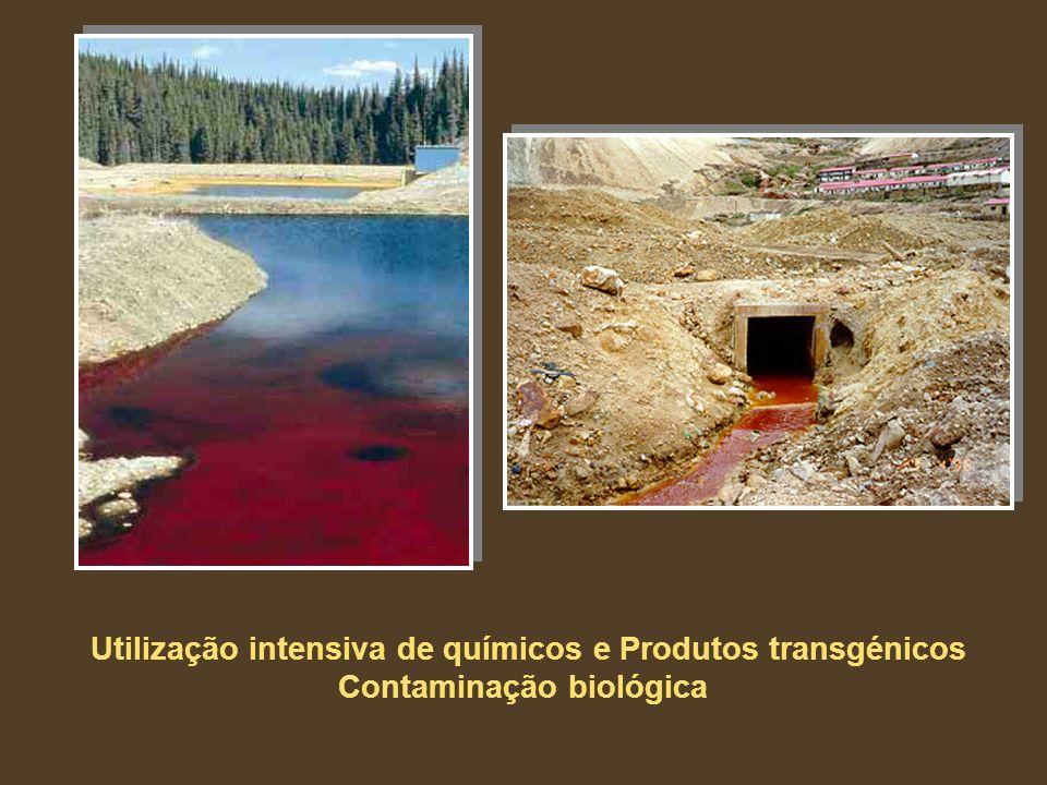 Utilização intensiva de químicos e Produtos transgénicos Contaminação biológica