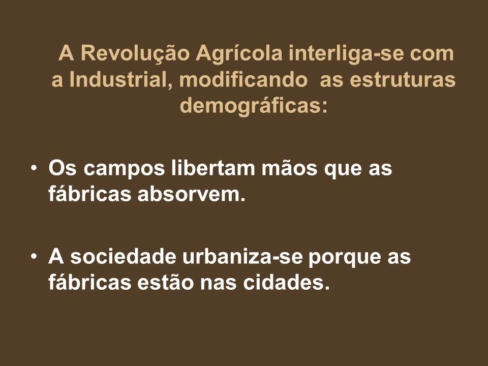 A Revolução Agrícola interliga-se com a Industrial, modificando as estruturas demográficas: Os campos libertam mãos que as fábricas absorvem. A socied