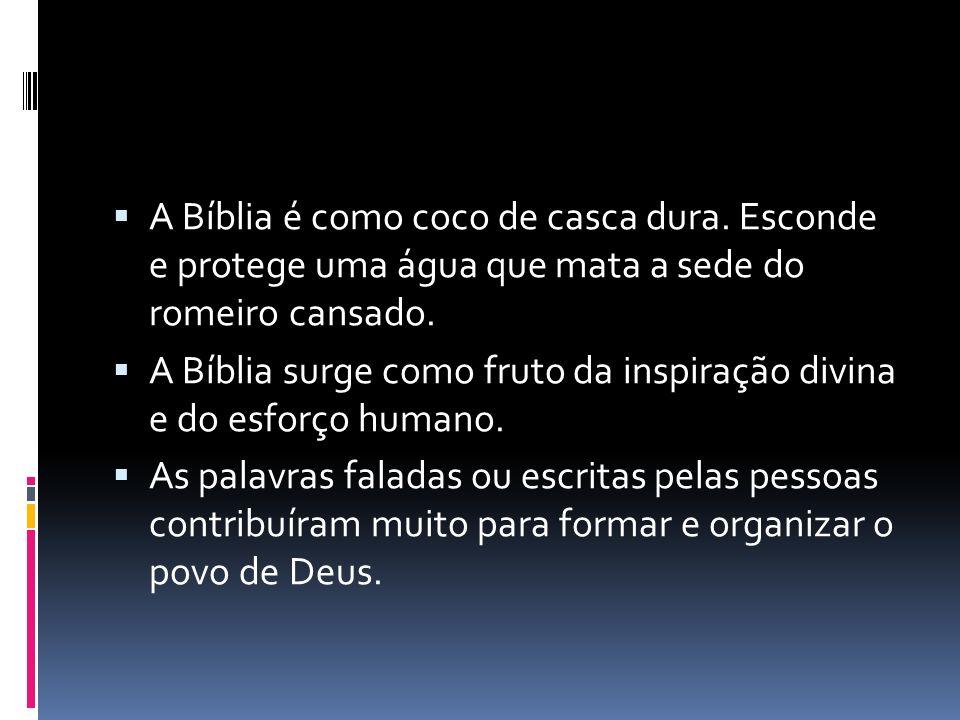 A Bíblia é como coco de casca dura. Esconde e protege uma água que mata a sede do romeiro cansado. A Bíblia surge como fruto da inspiração divina e do
