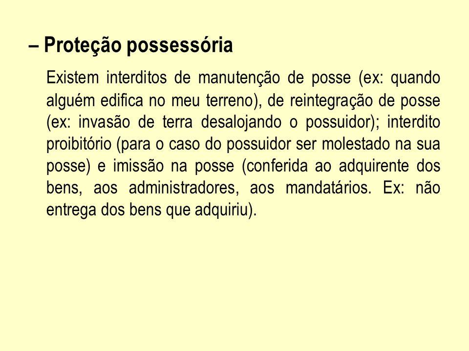 – Proteção possessória Existem interditos de manutenção de posse (ex: quando alguém edifica no meu terreno), de reintegração de posse (ex: invasão de