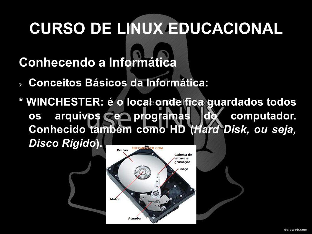 CURSO DE LINUX EDUCACIONAL Conhecendo a Informática Conceitos Básicos da Informática: * WINCHESTER: é o local onde fica guardados todos os arquivos e