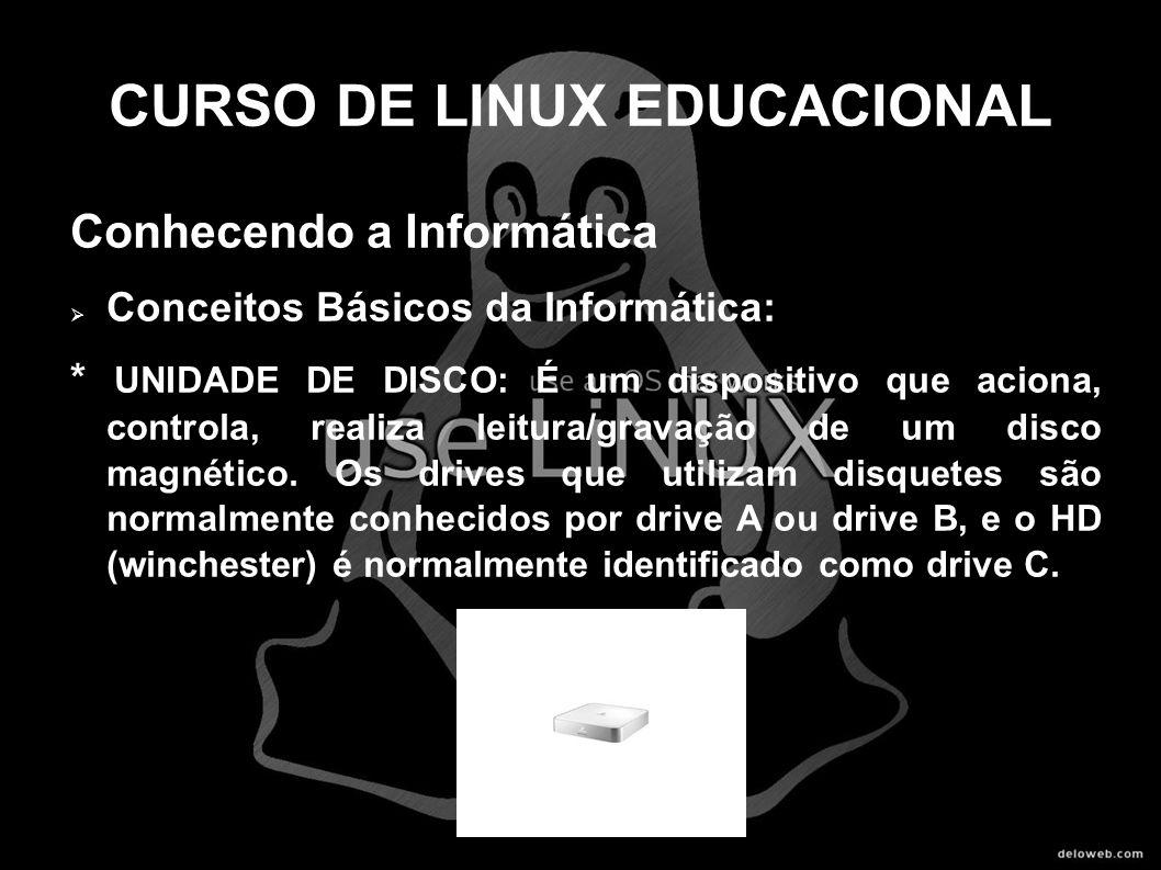 CURSO DE LINUX EDUCACIONAL Conhecendo a Informática Conceitos Básicos da Informática: * UNIDADE DE DISCO: É um dispositivo que aciona, controla, reali