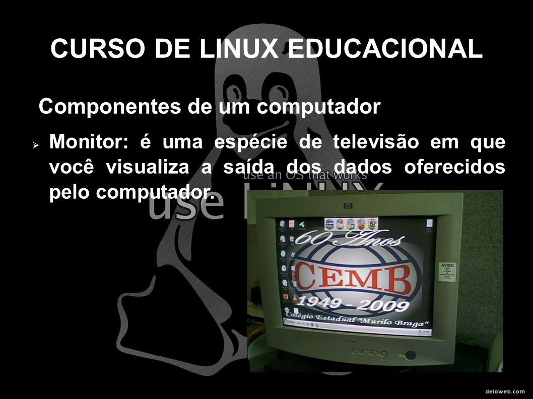 CURSO DE LINUX EDUCACIONAL Componentes de um computador Monitor: é uma espécie de televisão em que você visualiza a saída dos dados oferecidos pelo co