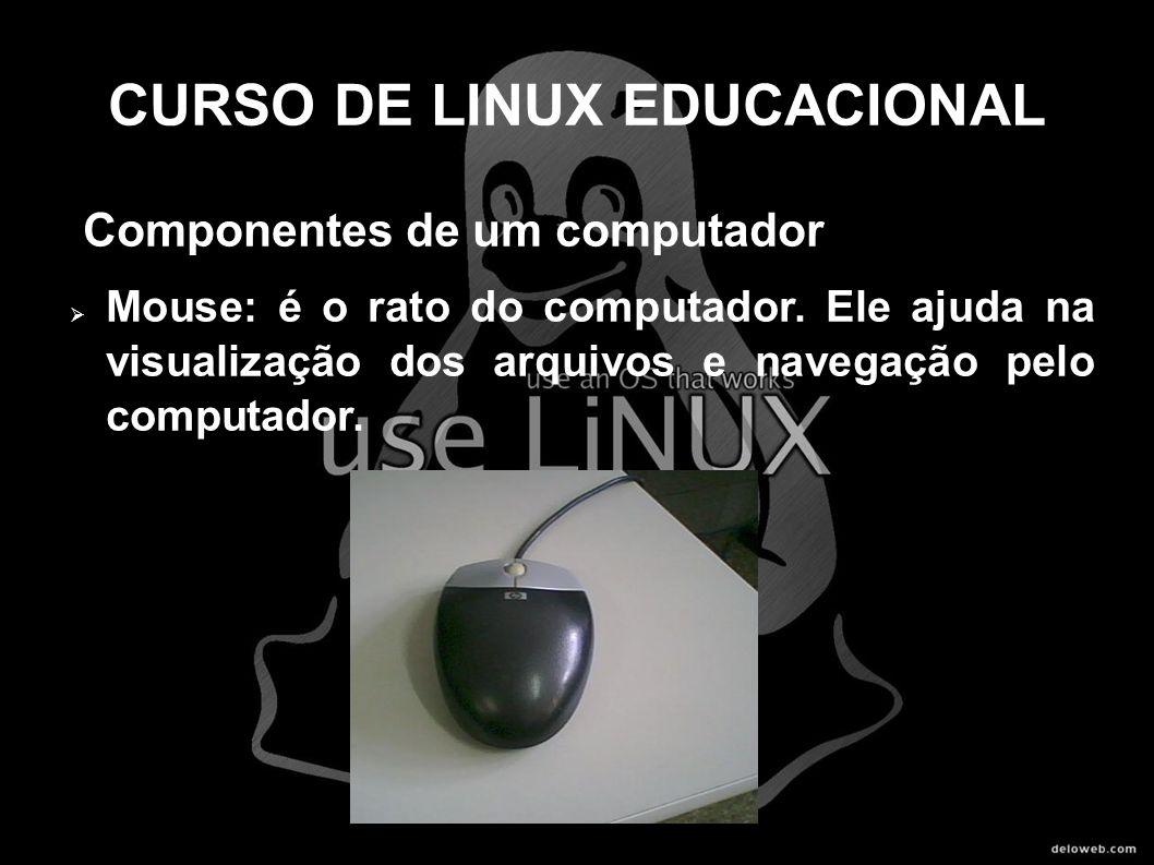 CURSO DE LINUX EDUCACIONAL Componentes de um computador Mouse: é o rato do computador. Ele ajuda na visualização dos arquivos e navegação pelo computa
