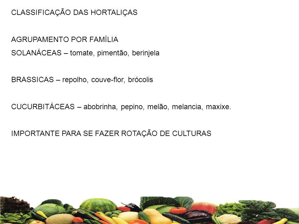 CLASSIFICAÇÃO DAS HORTALIÇAS AGRUPAMENTO POR FAMÍLIA SOLANÁCEAS – tomate, pimentão, berinjela BRASSICAS – repolho, couve-flor, brócolis CUCURBITÁCEAS
