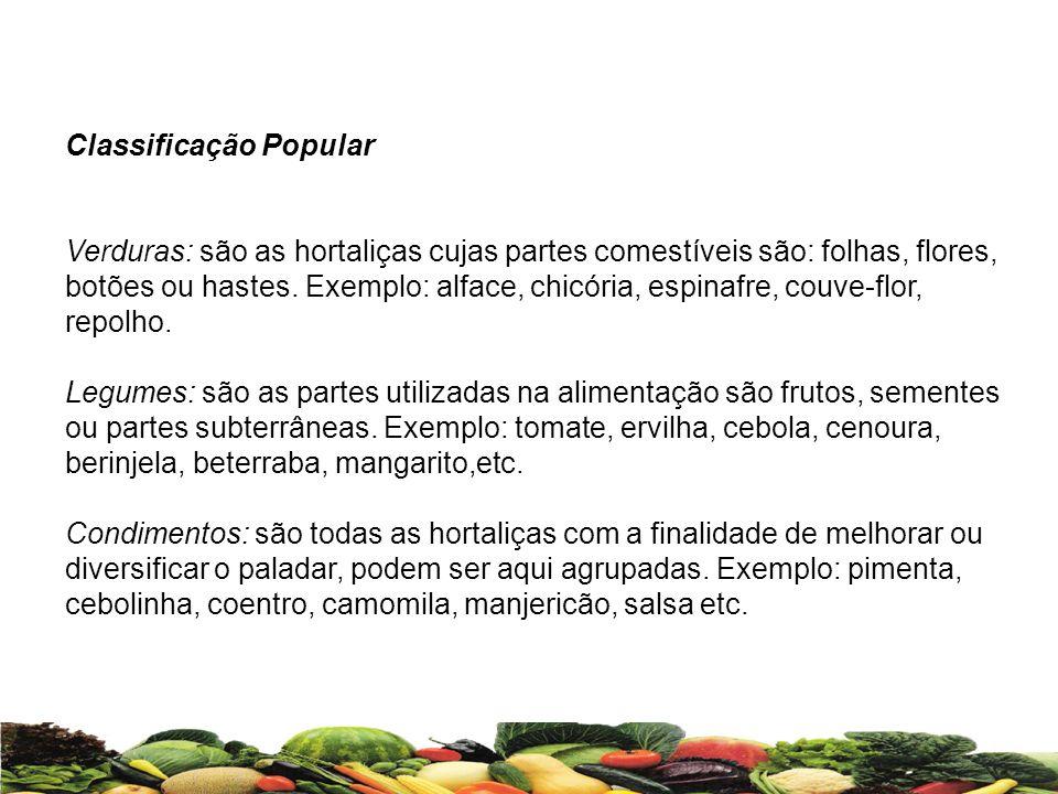 Classificação Popular Verduras: são as hortaliças cujas partes comestíveis são: folhas, flores, botões ou hastes. Exemplo: alface, chicória, espinafre
