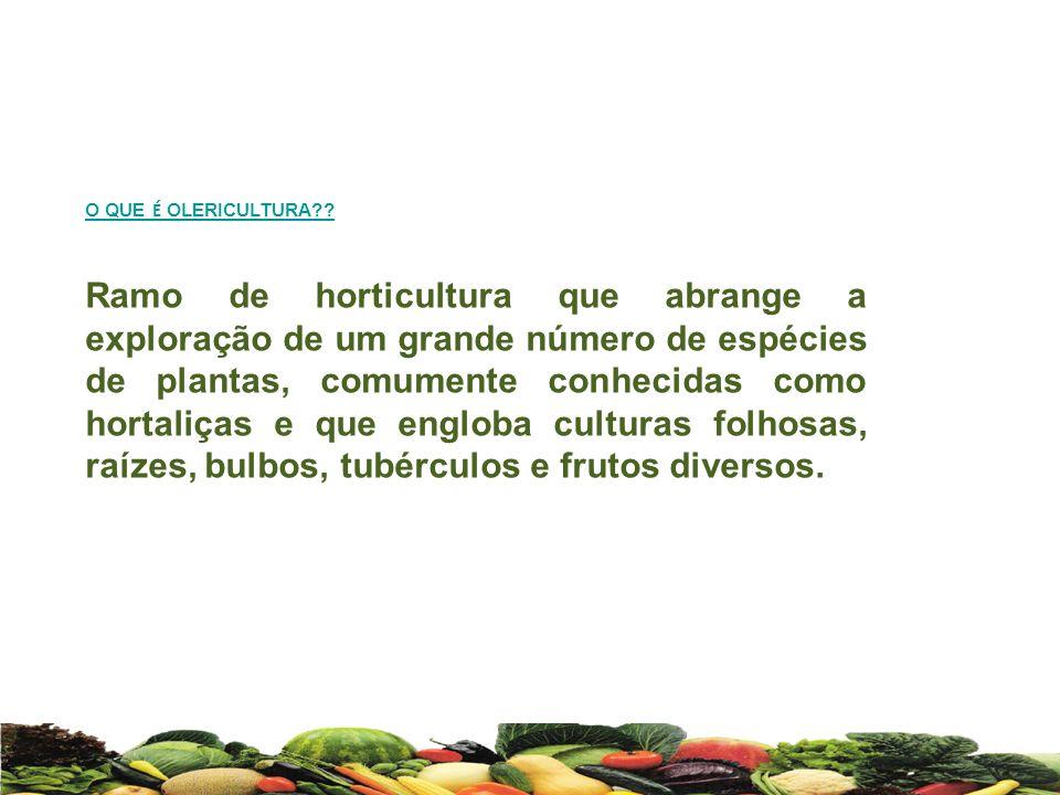 O QUE É OLERICULTURA?? Ramo de horticultura que abrange a exploração de um grande número de espécies de plantas, comumente conhecidas como hortaliças