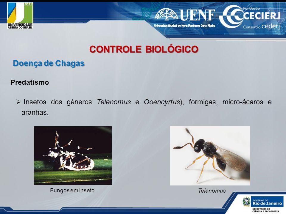 Predatismo Insetos dos gêneros Telenomus e Ooencyrtus), formigas, micro-ácaros e aranhas. Fungos em inseto Telenomus CONTROLE BIOLÓGICO Doença de Chag