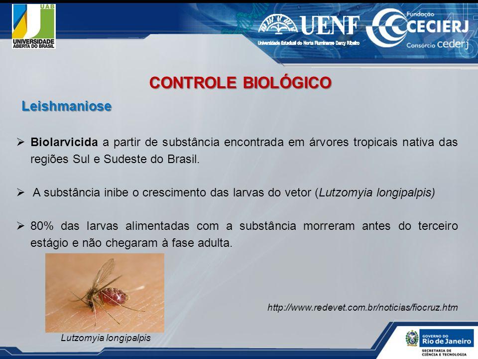 Biolarvicida a partir de substância encontrada em árvores tropicais nativa das regiões Sul e Sudeste do Brasil. A substância inibe o crescimento das l