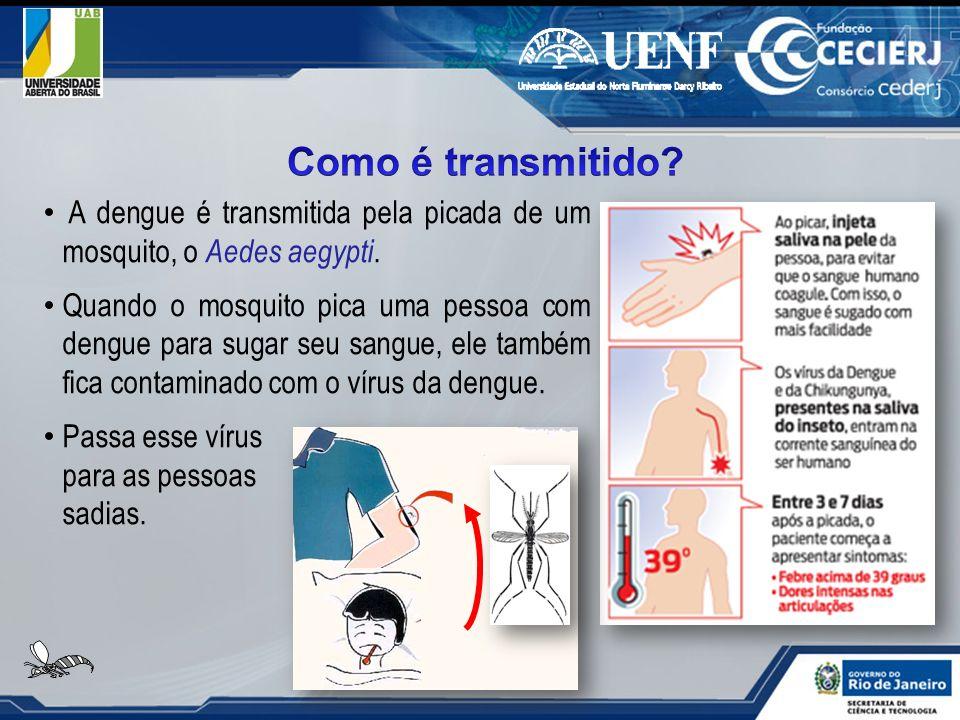 A dengue é transmitida pela picada de um mosquito, o Aedes aegypti. Quando o mosquito pica uma pessoa com dengue para sugar seu sangue, ele também fic