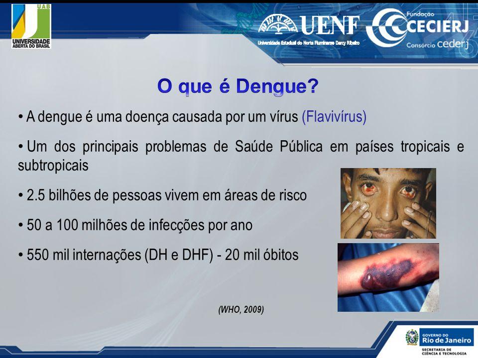 A dengue é uma doença causada por um vírus (Flavivírus) Um dos principais problemas de Saúde Pública em países tropicais e subtropicais 2.5 bilhões de