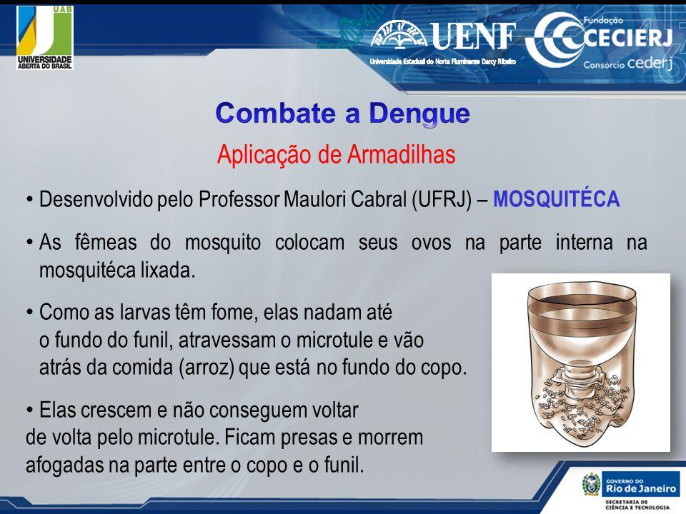 Aplicação de Armadilhas Desenvolvido pelo Professor Maulori Cabral (UFRJ) – MOSQUITÉCA As fêmeas do mosquito colocam seus ovos na parte interna na mos