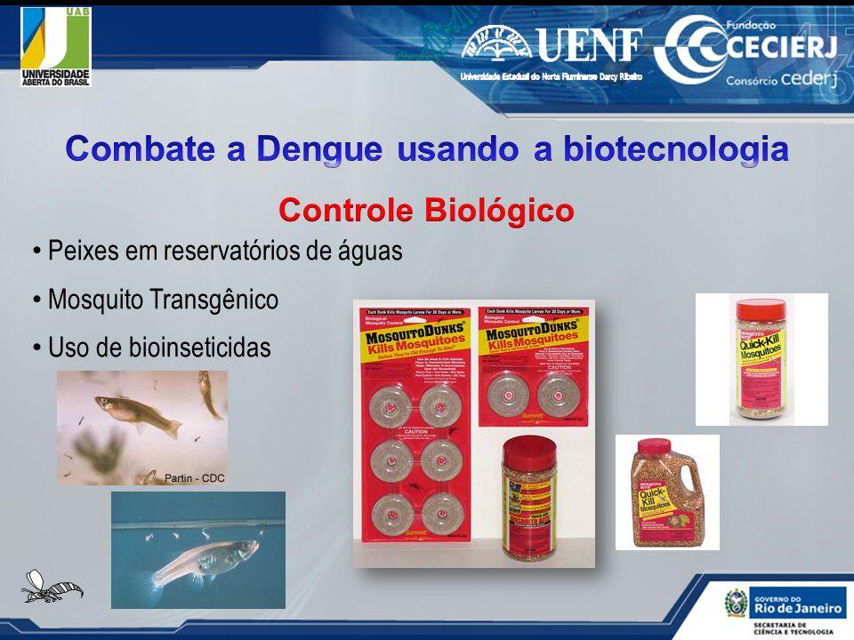 Peixes em reservatórios de águas Mosquito Transgênico Uso de bioinseticidas