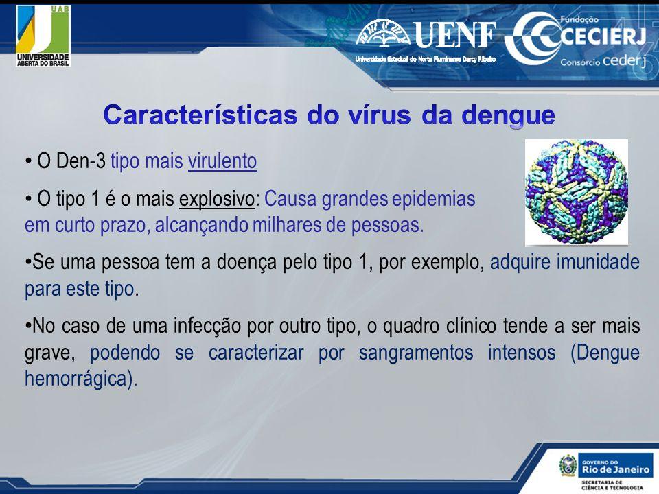 O Den-3 tipo mais virulento O tipo 1 é o mais explosivo: Causa grandes epidemias em curto prazo, alcançando milhares de pessoas. Se uma pessoa tem a d