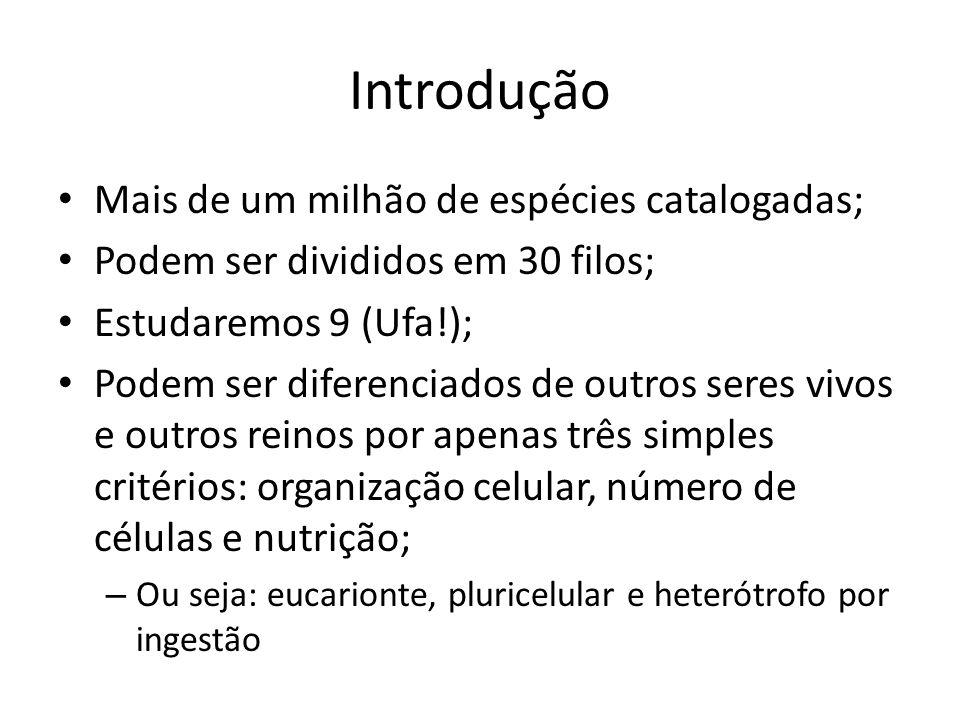 Metameria Contribuição para a locomoção; Filos: Annelida, Arthropoda e Chordata (fase embrionária);