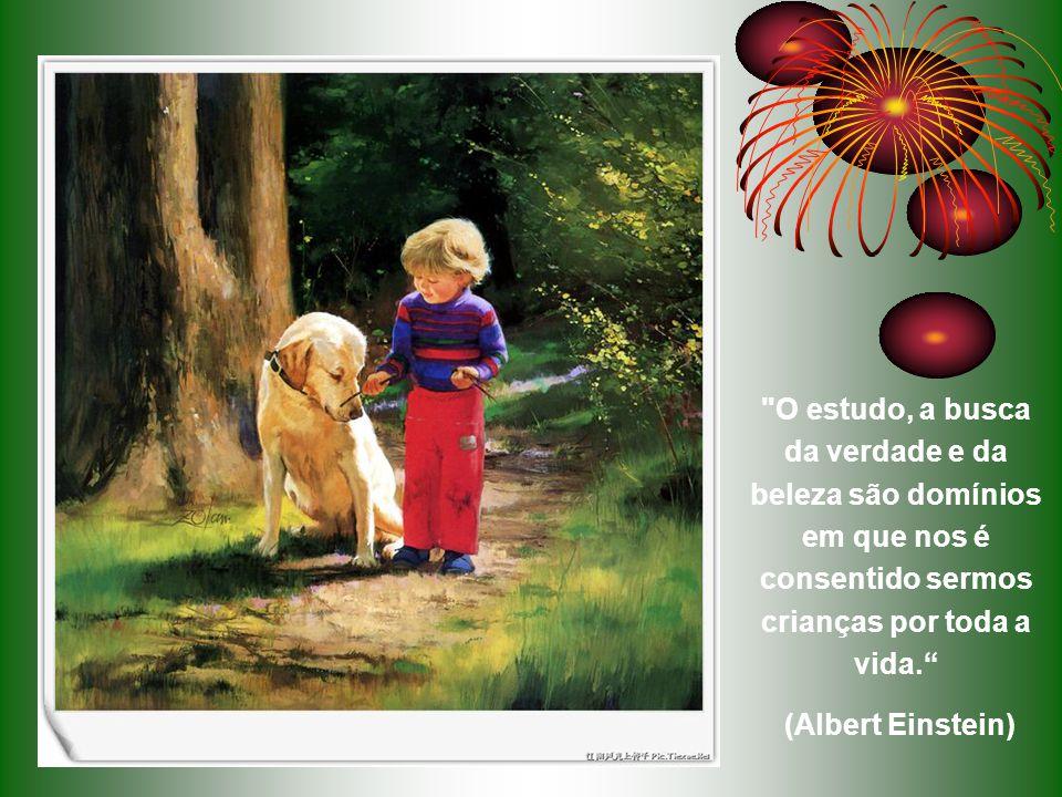 Educa a criança no caminho em que deve andar; e até quando envelhecer não se desviará dele. Provérbios 22:6