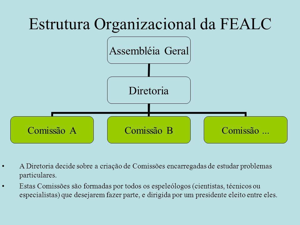 Estrutura Organizacional da FEALC Assembléia Geral Diretoria Comissão A Comissão B Comissão... A Diretoria decide sobre a criação de Comissões encarre