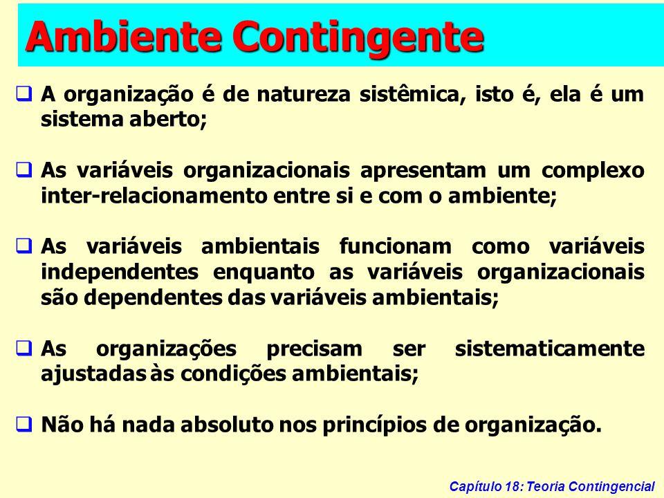 Capítulo 18: Teoria Contingencial Ambiente Contingente A organização é de natureza sistêmica, isto é, ela é um sistema aberto; As variáveis organizaci