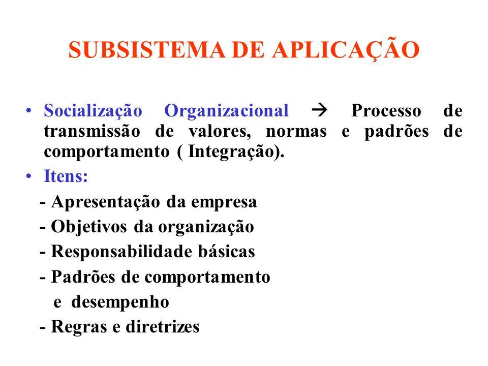 SUBSISTEMA DE APLICAÇÃO Socialização Organizacional Processo de transmissão de valores, normas e padrões de comportamento ( Integração). Itens: - Apre