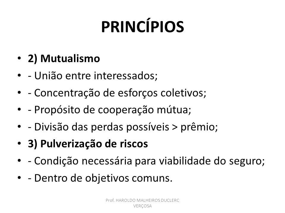 INSTITUTO DE RESSEGUROS DO BRASIL – Dec.-Lei 73, art.