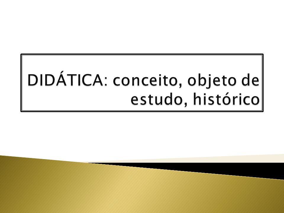 Pressupostos didáticos diluídos no Ratio Studiorum – formação do homem universal, humanista e cristão Foco nos instrumentos e regras metodológicas, compreendendo o estudo privado, individual.