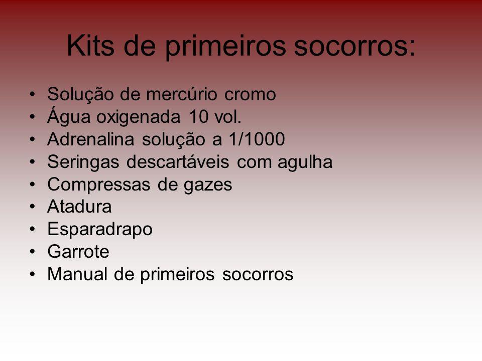 Kits de primeiros socorros: Solução de mercúrio cromo Água oxigenada 10 vol. Adrenalina solução a 1/1000 Seringas descartáveis com agulha Compressas d