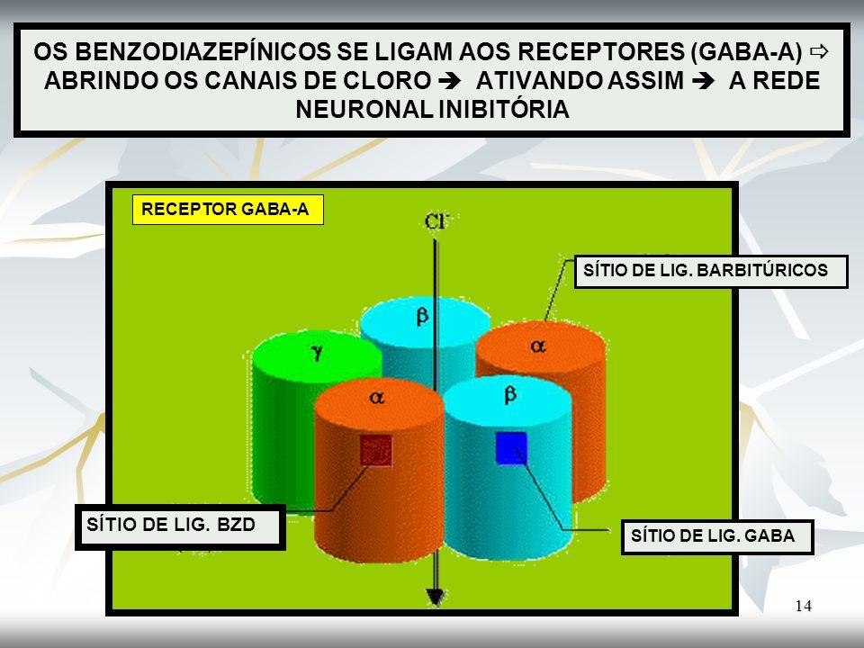 OS BENZODIAZEPÍNICOS SE LIGAM AOS RECEPTORES (GABA-A) ABRINDO OS CANAIS DE CLORO ATIVANDO ASSIM A REDE NEURONAL INIBITÓRIA 14 RECEPTOR GABA-A SÍTIO DE