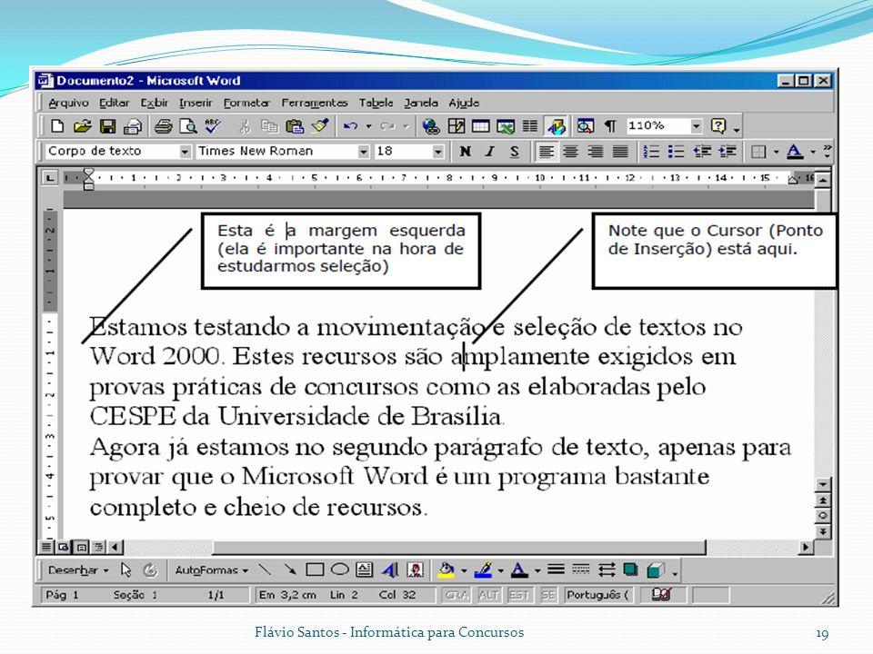 Flávio Santos - Informática para Concursos19