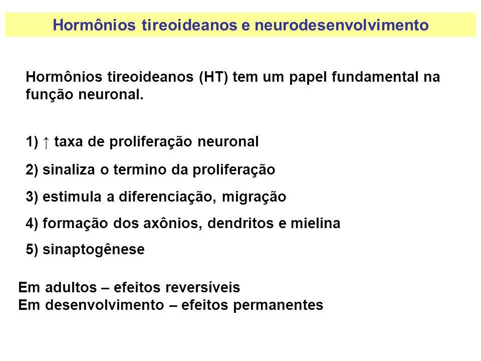 Hormônios tireoideanos (HT) tem um papel fundamental na função neuronal. Em adultos – efeitos reversíveis Em desenvolvimento – efeitos permanentes 1)