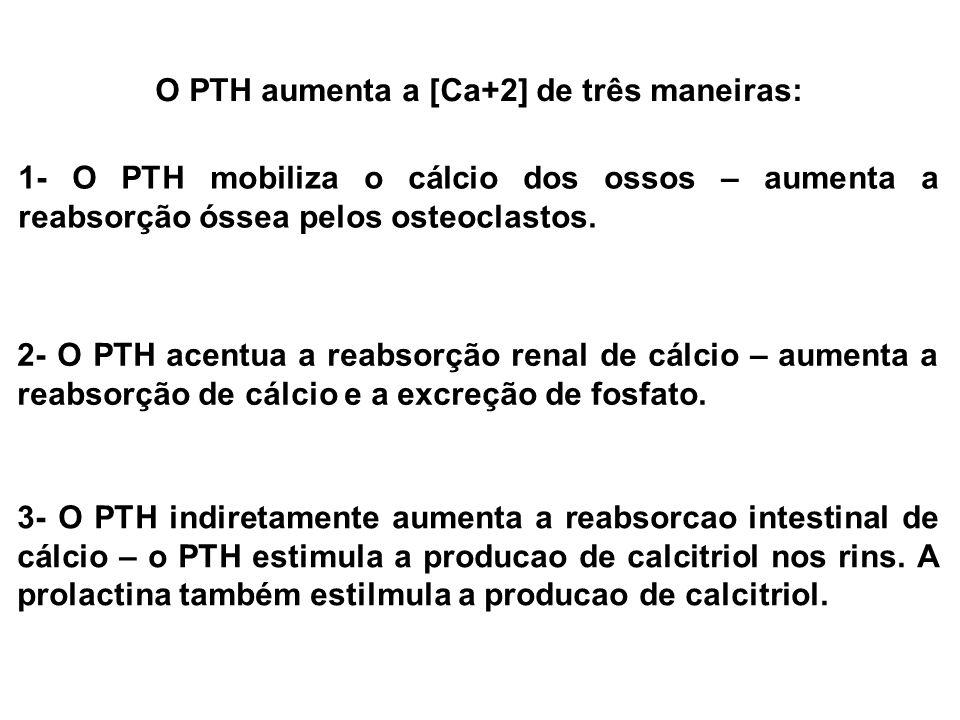 O PTH aumenta a [Ca+2] de três maneiras: 1- O PTH mobiliza o cálcio dos ossos – aumenta a reabsorção óssea pelos osteoclastos. 2- O PTH acentua a reab