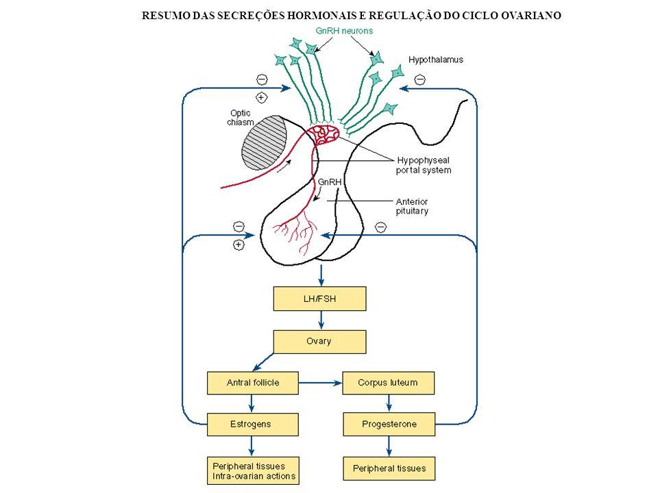 RESUMO DAS SECREÇÕES HORMONAIS E REGULAÇÃO DO CICLO OVARIANO