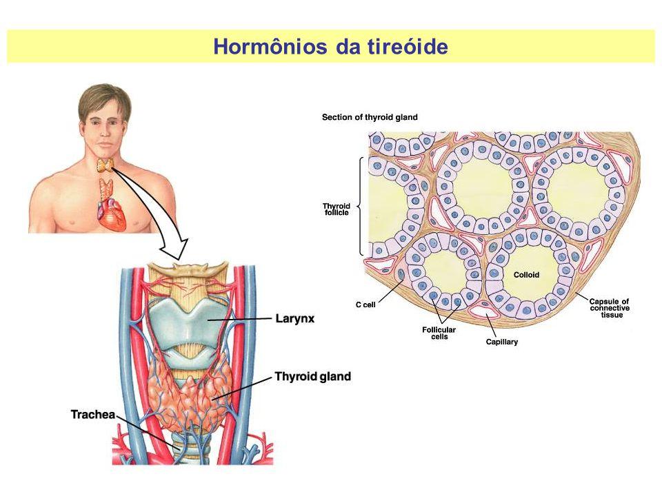 Hormônios da tireóide