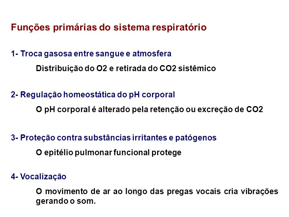 Funções primárias do sistema respiratório 1- Troca gasosa entre sangue e atmosfera Distribuição do O2 e retirada do CO2 sistêmico 2- Regulação homeost