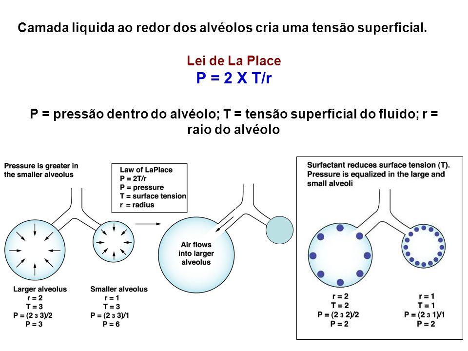 Camada liquida ao redor dos alvéolos cria uma tensão superficial. Lei de La Place P = 2 X T/r P = pressão dentro do alvéolo; T = tensão superficial do