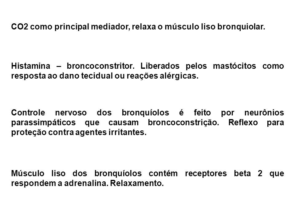 Controle nervoso dos bronquíolos é feito por neurônios parassimpáticos que causam broncoconstrição. Reflexo para proteção contra agentes irritantes. M