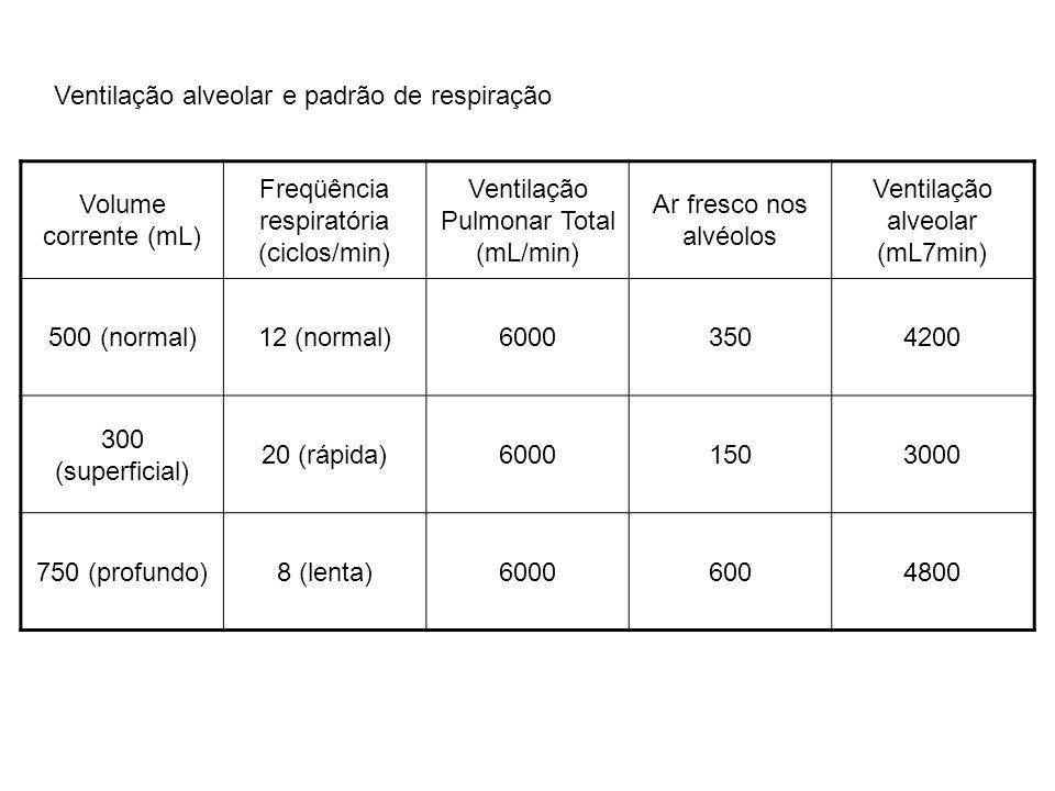 Volume corrente (mL) Freqüência respiratória (ciclos/min) Ventilação Pulmonar Total (mL/min) Ar fresco nos alvéolos Ventilação alveolar (mL7min) 500 (