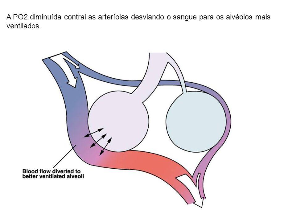 A PO2 diminuída contrai as arteríolas desviando o sangue para os alvéolos mais ventilados.