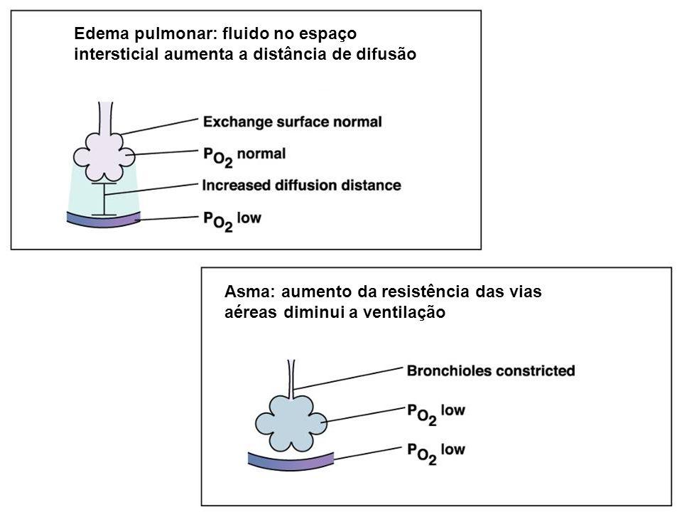 Edema pulmonar: fluido no espaço intersticial aumenta a distância de difusão Asma: aumento da resistência das vias aéreas diminui a ventilação
