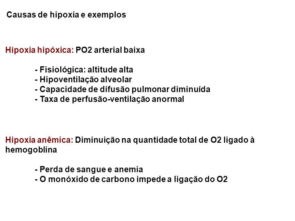 Causas de hipoxia e exemplos Hipoxia hipóxica: PO2 arterial baixa - Fisiológica: altitude alta - Hipoventilação alveolar - Capacidade de difusão pulmo