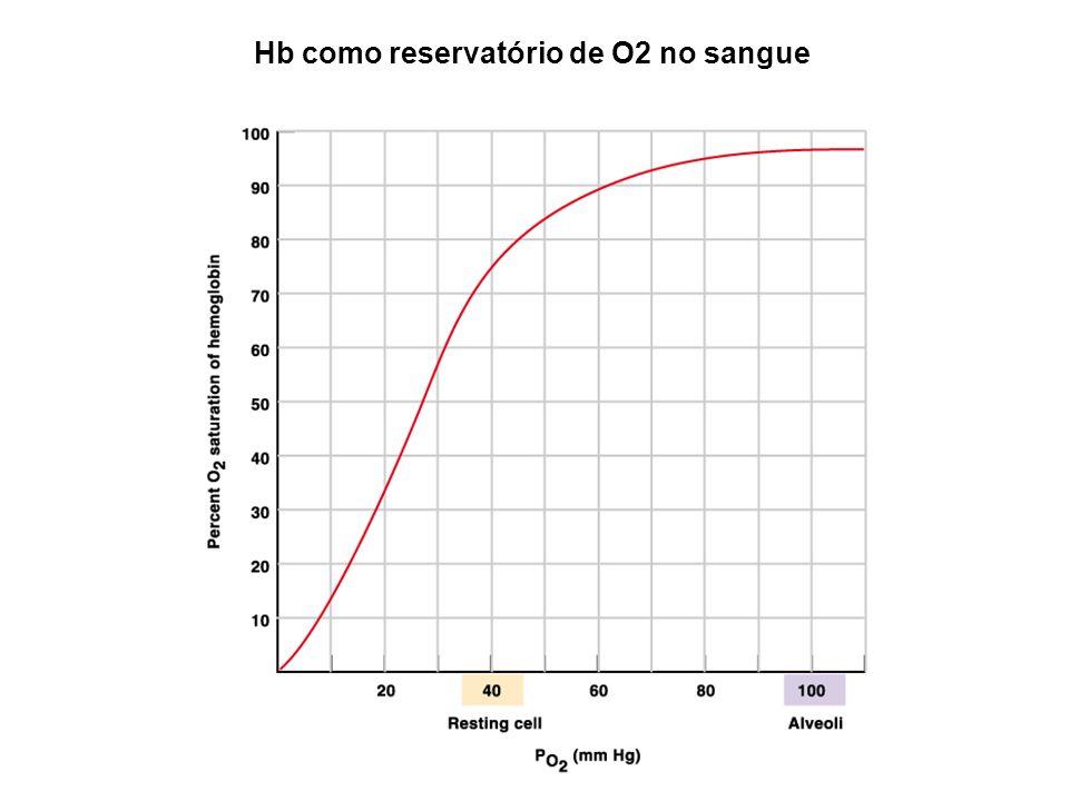 Hb como reservatório de O2 no sangue